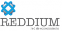 Reddium Technological Consulting
